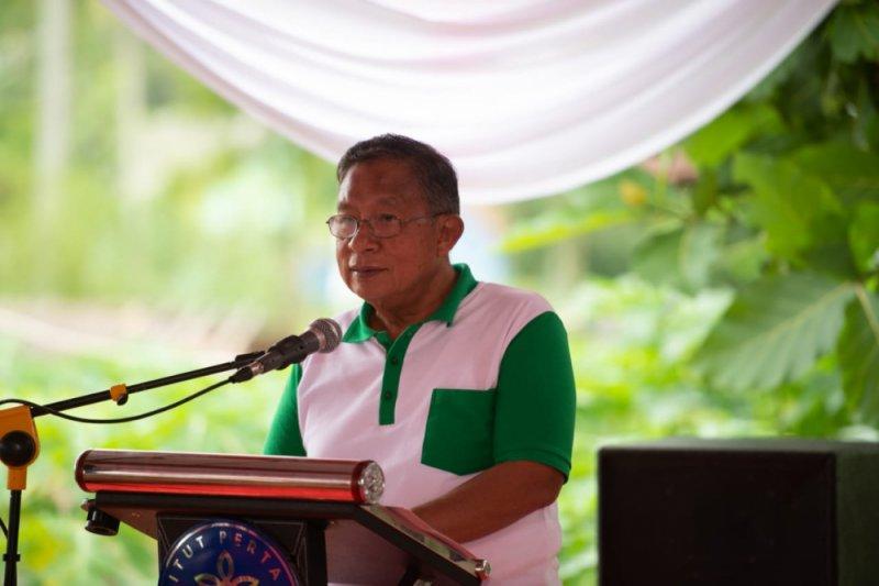 Harga karet turun, pemerintah siap berdiskusi dengan Thailand dan Malaysia