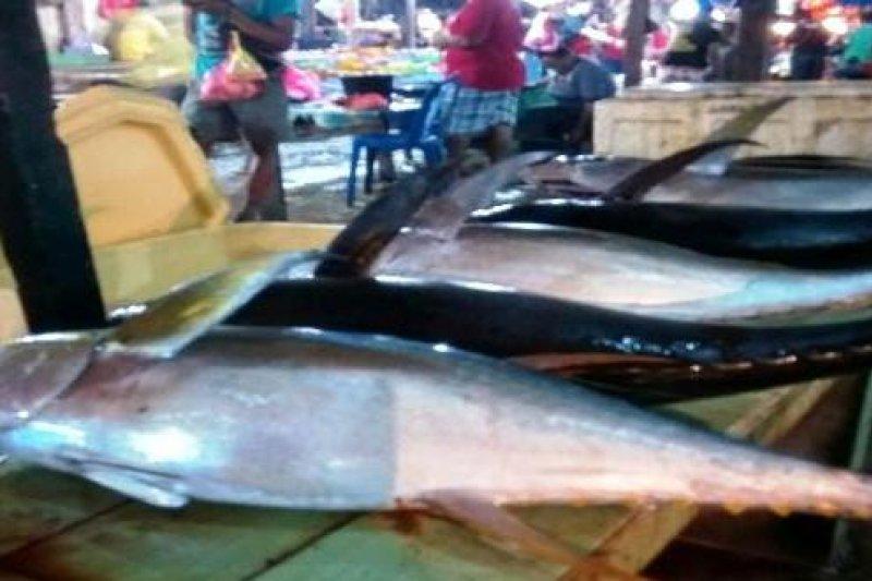 KKP bangun pasar ikan Bosnik pada 2019