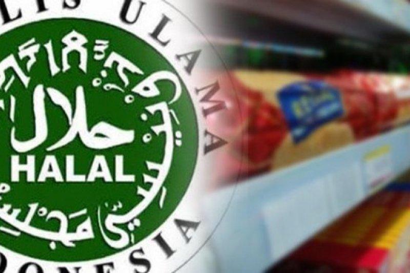 Halal Watch: Kewajiban sertifikasi halal jangan sulitkan pelaku usaha
