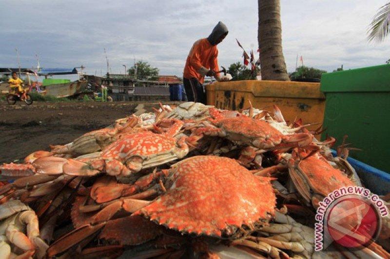 Cangkang kepiting diolah jadi antihama ramah lingkungan
