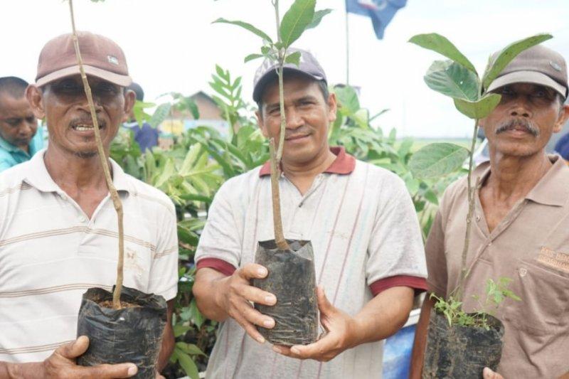 Sahabat Lestari bagikan 30.000 bibit tanaman buah
