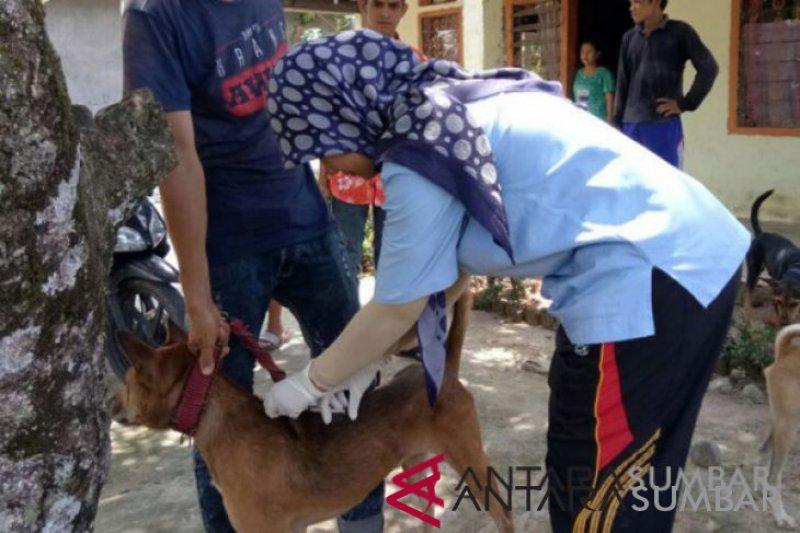 Kasus gigitan hewan penular rabies meningkat di Agam