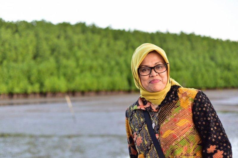 13.792 hektare padi di Sulsel terdampak banjir