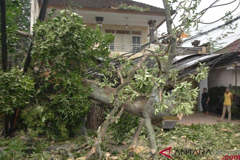 Puluhan rumah rusak diterjang angin kencang