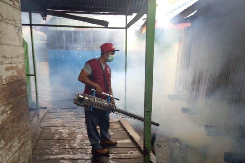 """Dinkes Asmat lakukan """"fogging"""" cegah DBD di Agats"""