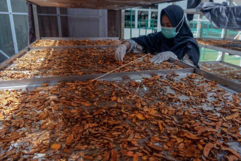 Kementerian Perdagangan tingkatkan ekspor rempah-rempah ke Belanda