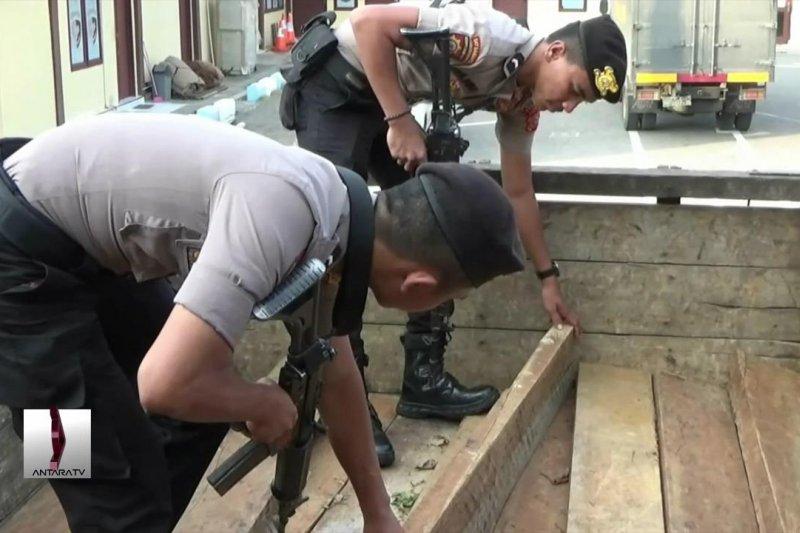 Dua orang diciduk gara-gara dua ton kayu ilegal