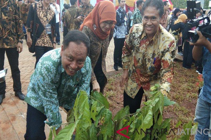 Menristekdikti: pengolahan kakao Indonesia kalah dengan Vietnam