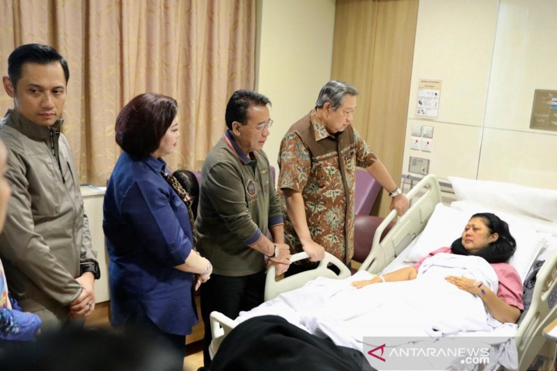 Keluarga Besar Partai Demokrat nantikan kesembuhan Ani Yudhoyono