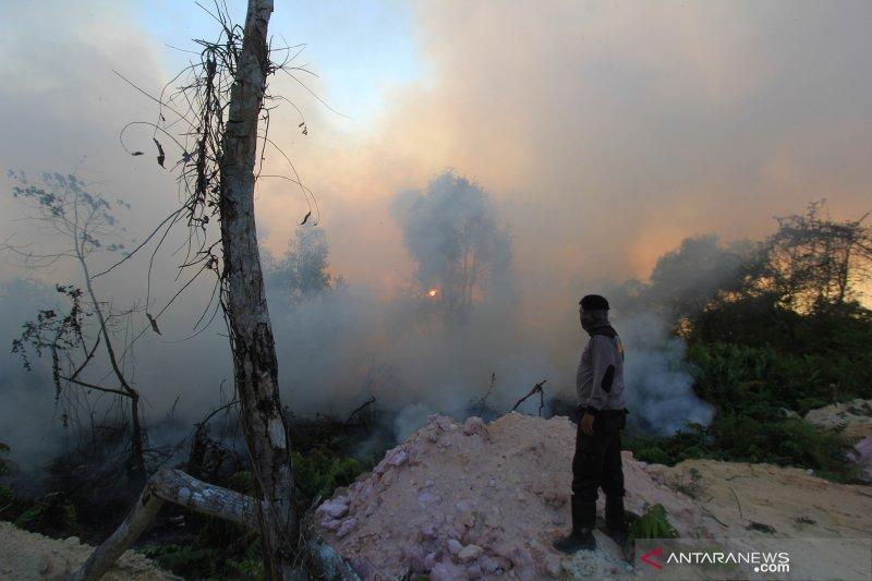 Moeldoko klaim pemerintah berprestasi menekan kebakaran hutan