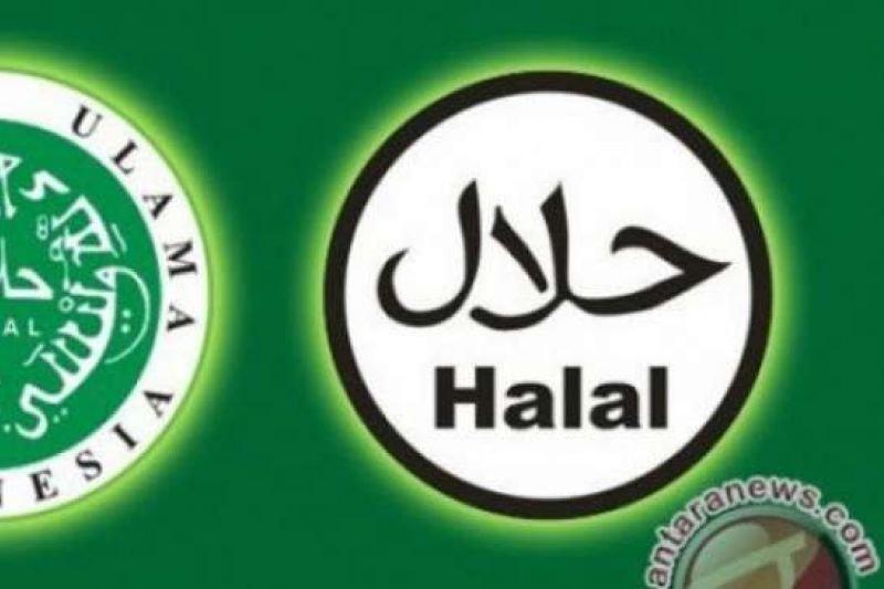 LPPOM MUI Riau terbitkan 284 sertifikat halal