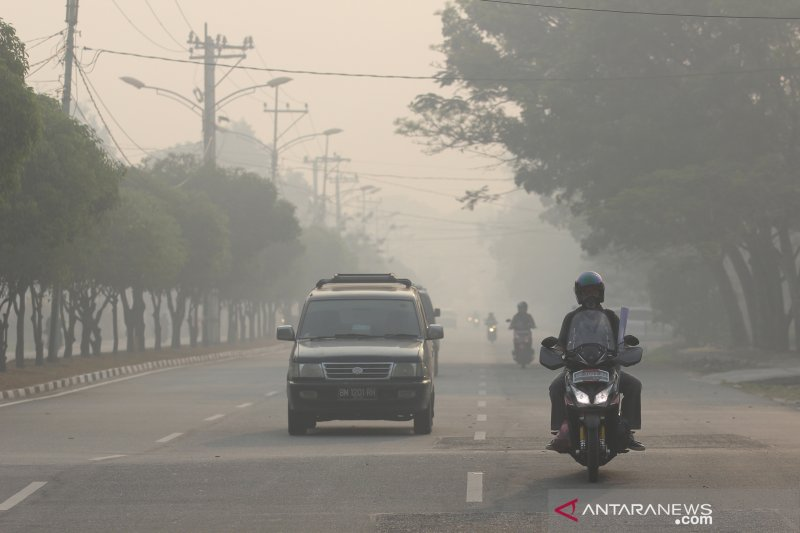 Kabut asap karhutla di Dumai