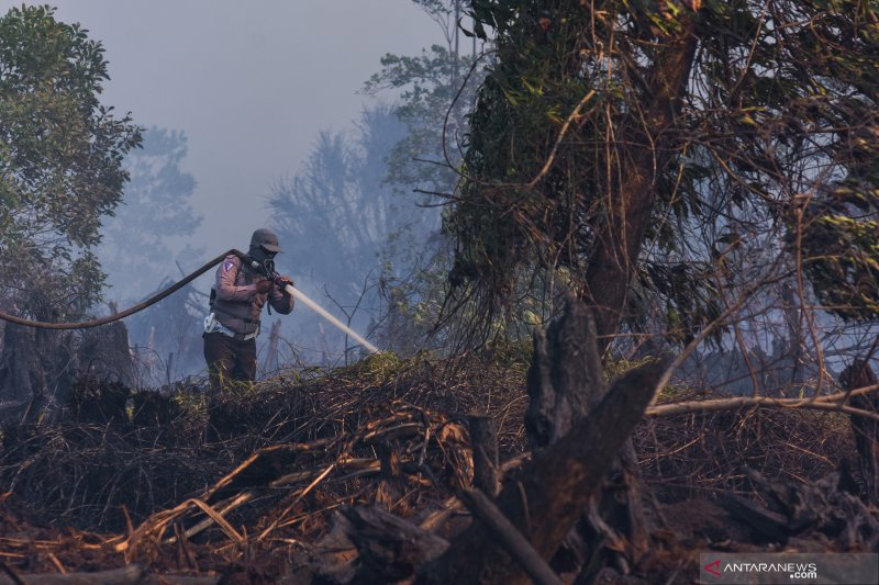 Di Dumai, kebakaran merembet ke lahan konsesi Chevron