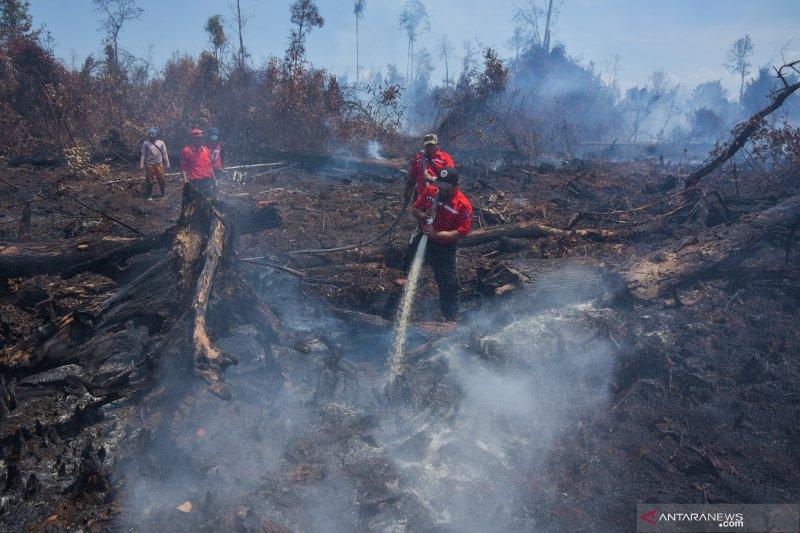 Pemadaman Karhutla Rupat Riau