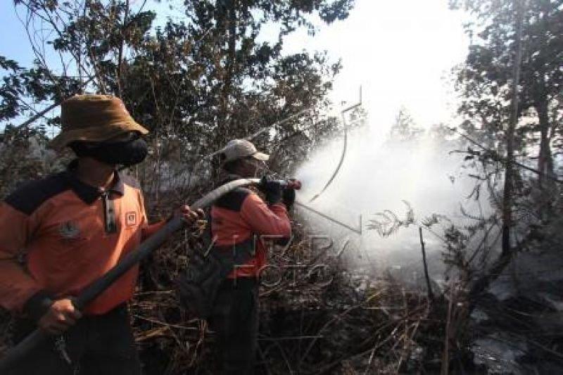 Karhutla Riau - Status udara Dumai berbahaya