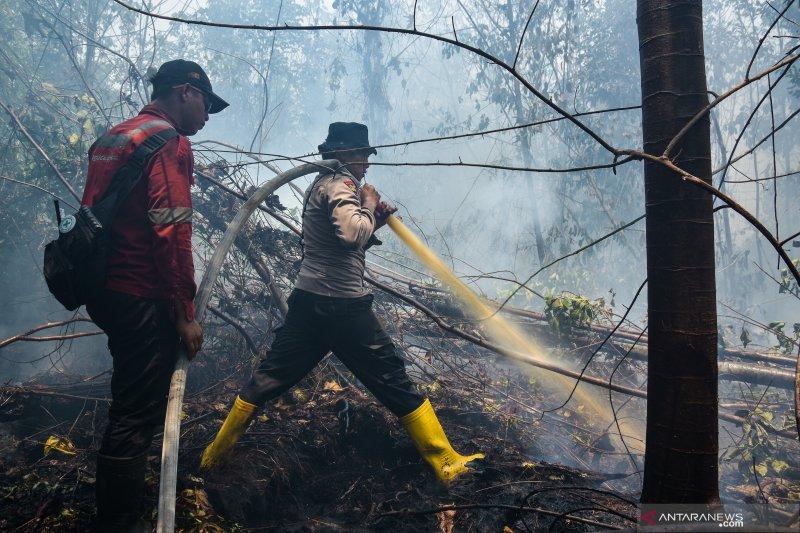 Bengkalis hadapi 20 kebakaran lahan sepanjang Mei