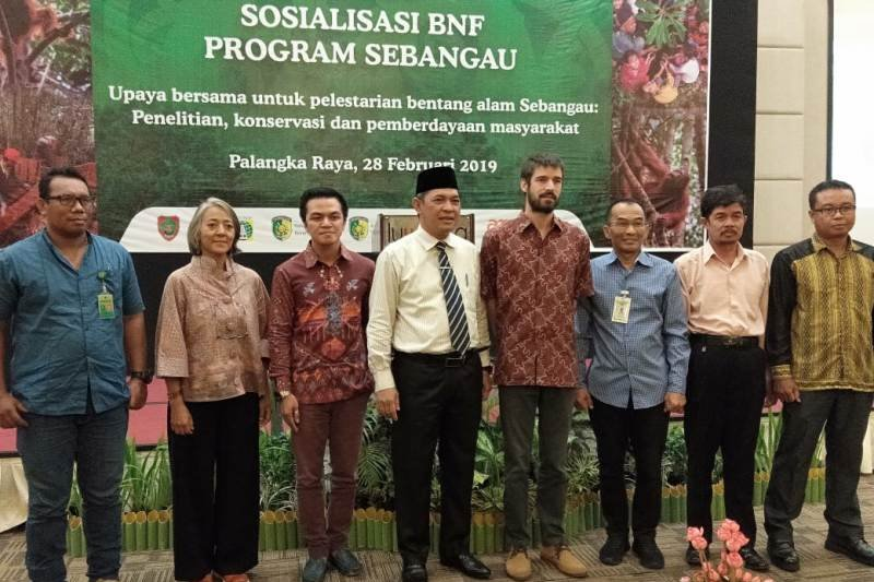 Target BNF tanam 50.000 pohon di lahan gambut