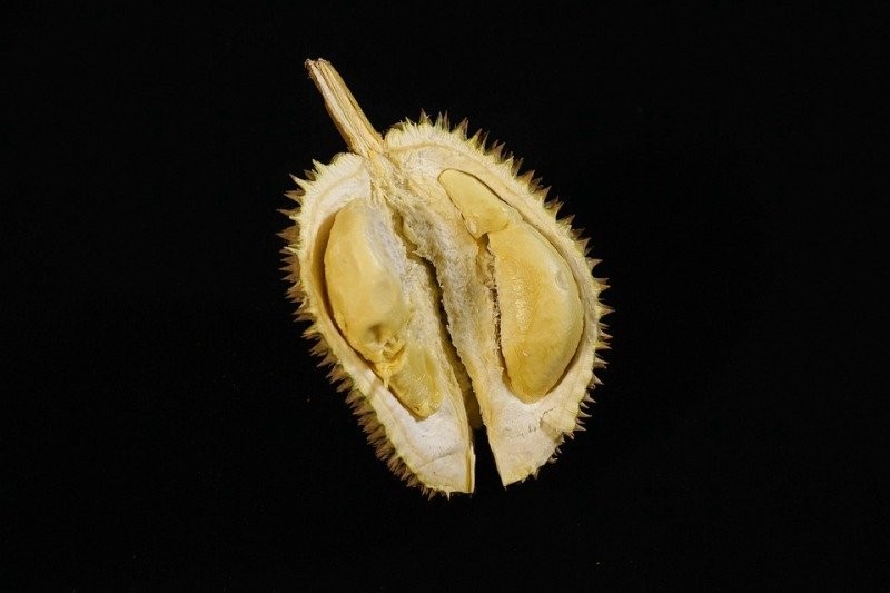 Penjelasan bahaya tidaknya makan durian sambil minum kopi