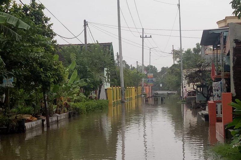 Sejumlah desa di Sidoarjo tergenang banjir
