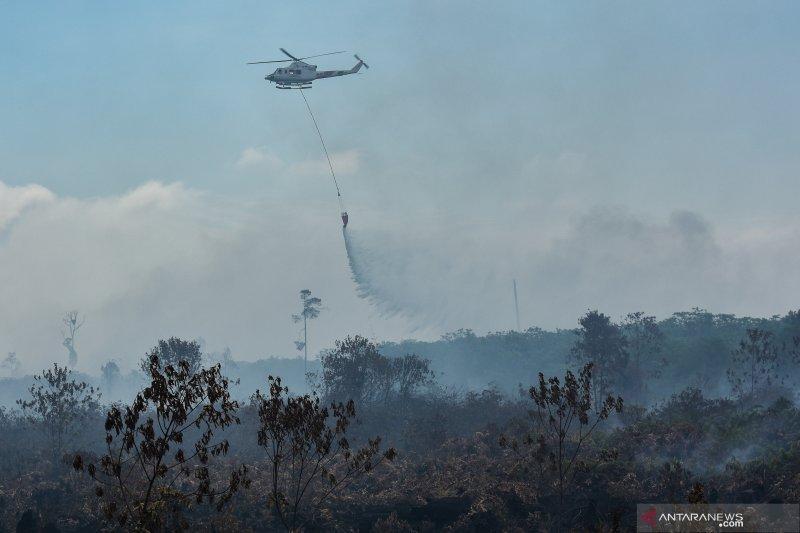 Sinar Mas Forestry kerahkan helikopter padamkan Karhutla di Riau