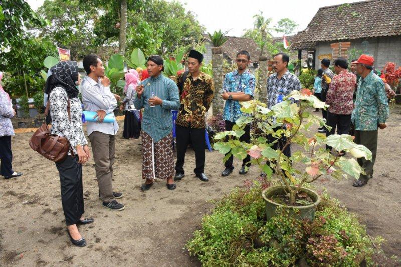 Sampah popok bayi sebagai media tanaman hias wakili Yogyakarta