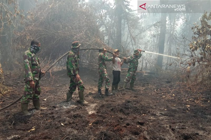 Vidio - Ratusan hektare lahan perkebunan warga di Bengkalis ludes akibat Karhutla
