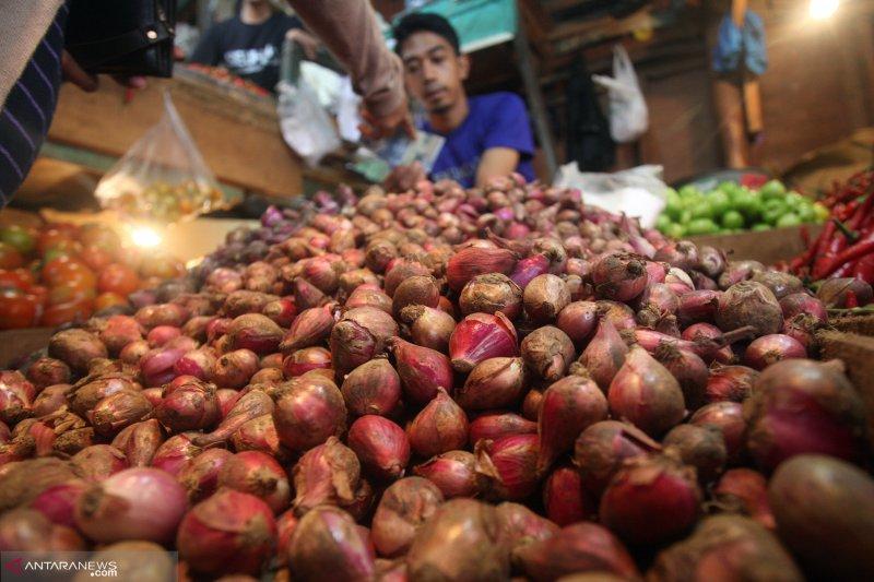 Bawang merah penyumbang terbesar inflasi Bukittinggi