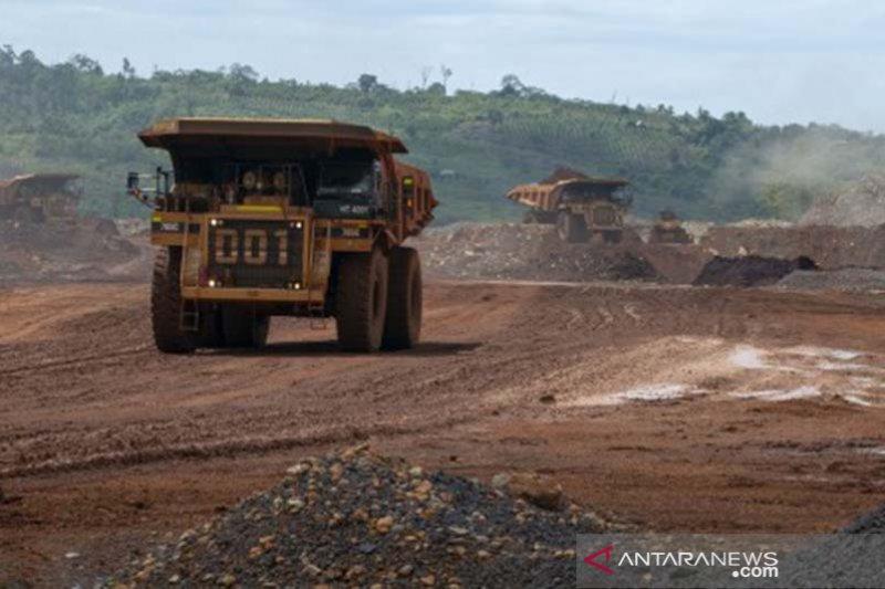 Pembukaan lahan baru tambang nikel