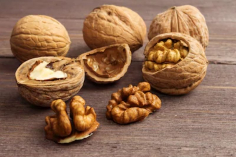 Studi: walnut bisa bantu lawan kanker payudara