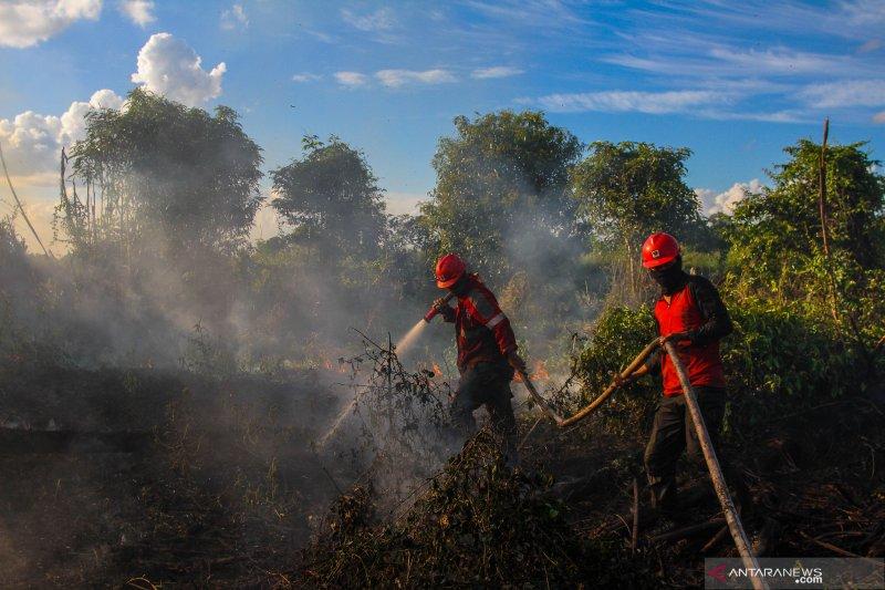 Sinar Mas bentuk desa Makmur Peduli Api
