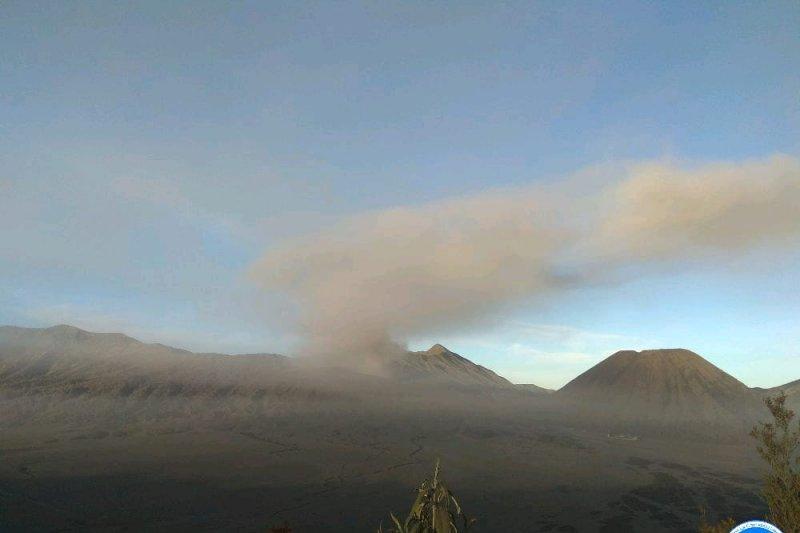 PVMBG sebut aktivitas Gunung Bromo cenderung menurun