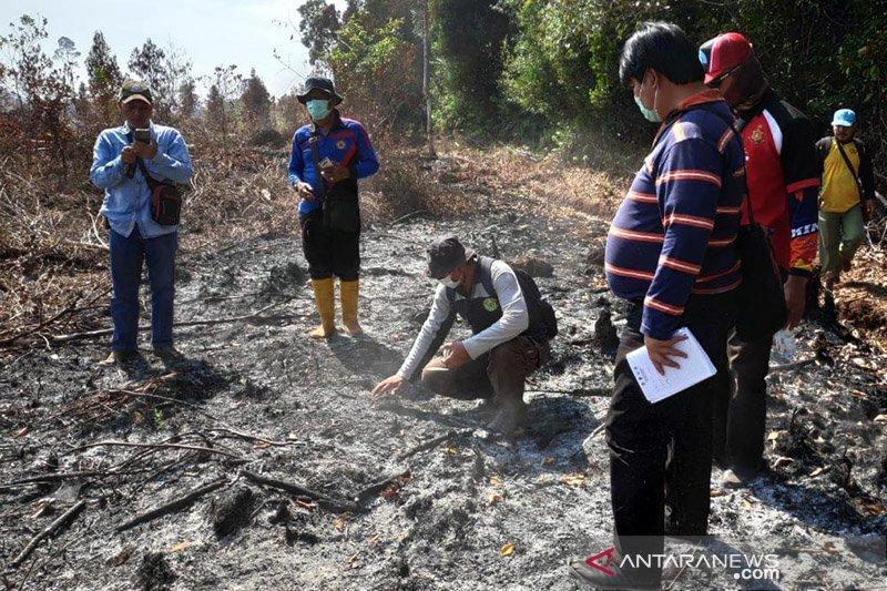 Ahli IPB dilibatkan polisi pada kebakaran hutan-lahan