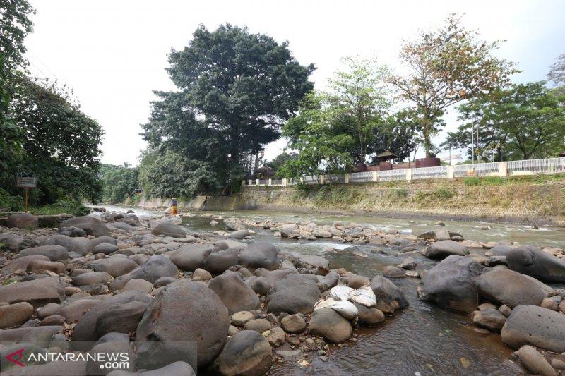 PDAM Bogor anggap tinja di Sungai Ciliwung tidak masalah