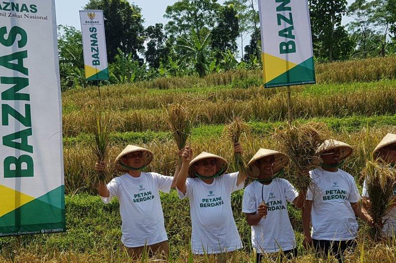 Baznas berdayakan petani Karawang