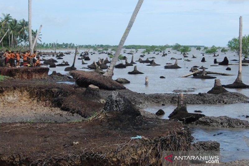 Peneliti Jepang ingatkan ancaman tenggelamnya Pulau Bengkalis akibat abrasi