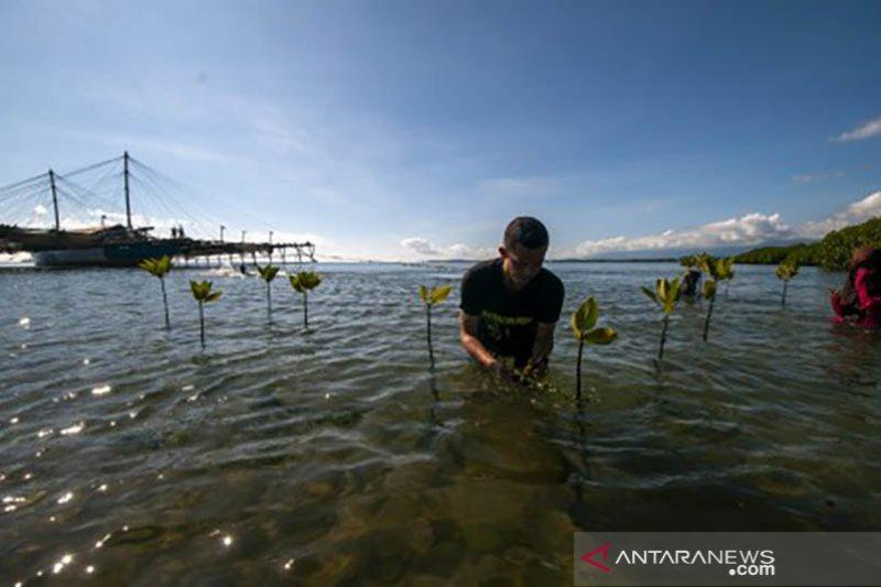 Tanam mangrove peringati Hari Bumi