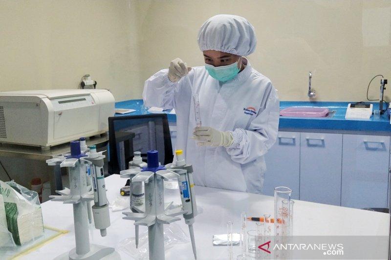 Kimia Farma Bali produksi 5 jenis rapid test skala nasional