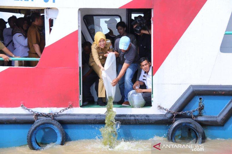 Dinas Perikanan Sumsel dorong  pengembangan budi daya ikan