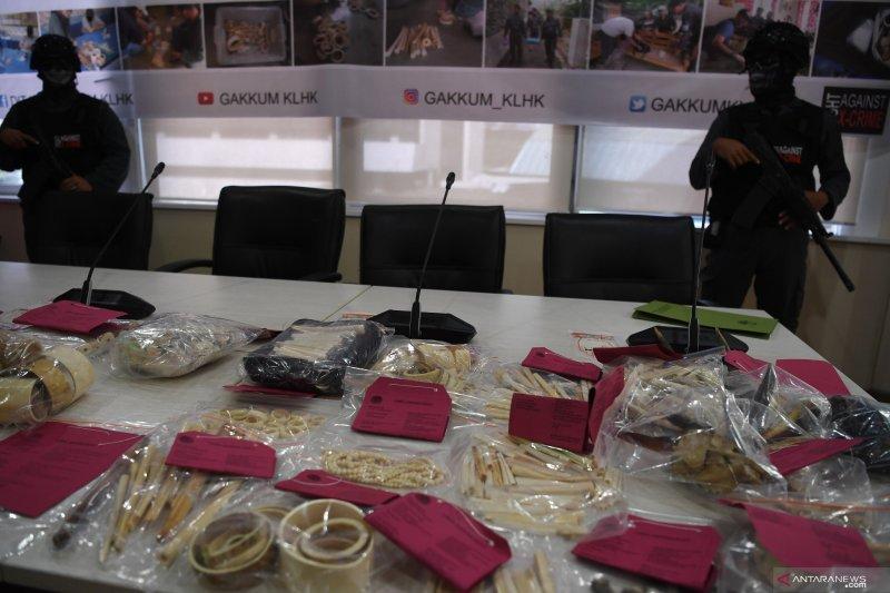 WWF: KLHK serius tangani perdagangan ilegal satwa liar