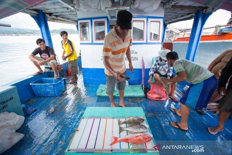 TNC Indonesia gandeng swasta perbaiki usaha perikanan