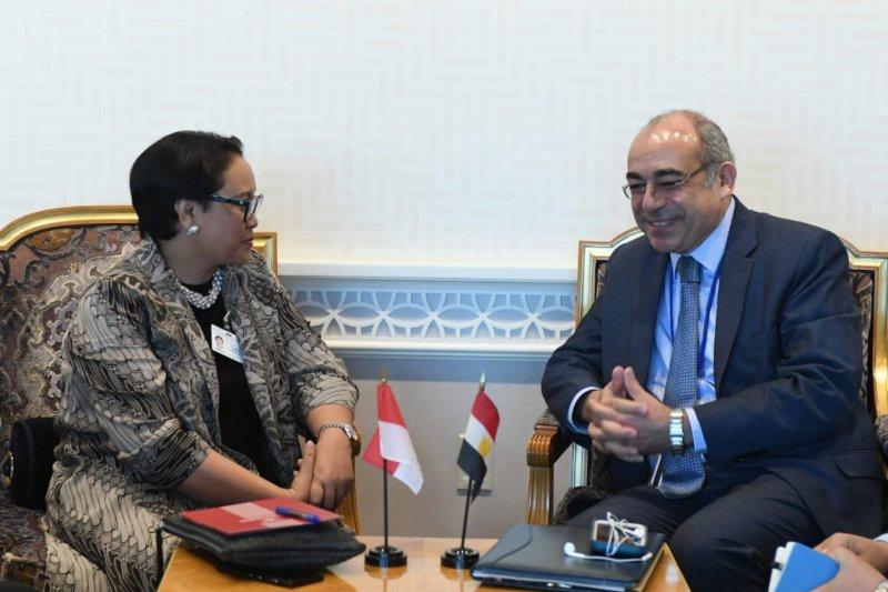 Menlu Retno Marsudi bertemu Watap Mesir bahas soal Gaza