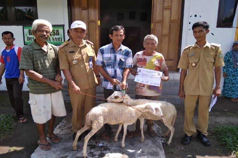 Desa pesisir Kotim gulirkan bantuan kambing tingkatkan kesejahteraan masyarakat