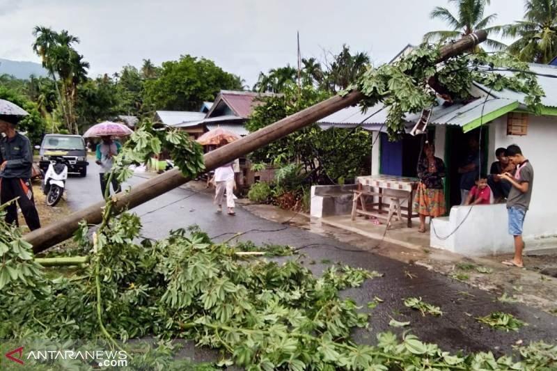 Lima pohon tumbang, satu motor tertimpa pohon di Agam