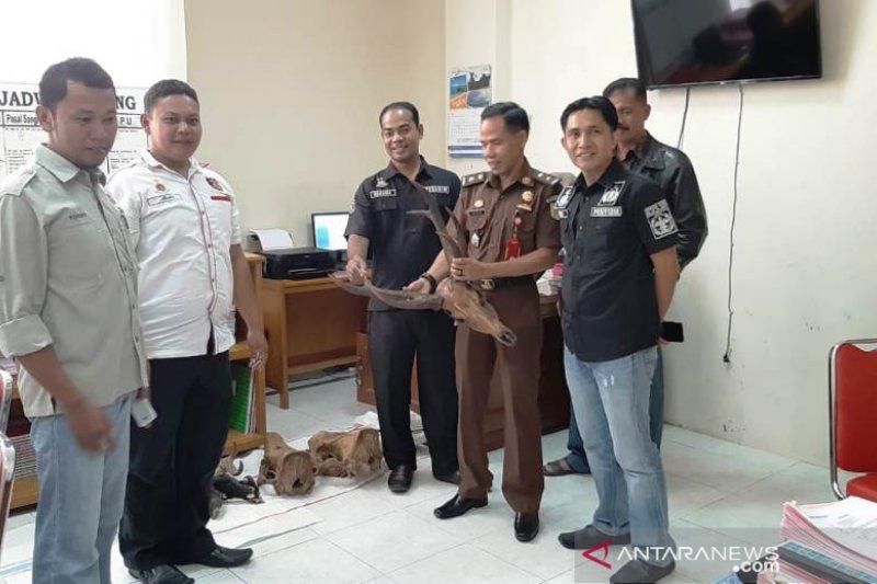 Polres Agam limpahkan tersangka dan barang bukti kasus satwa dilindungi