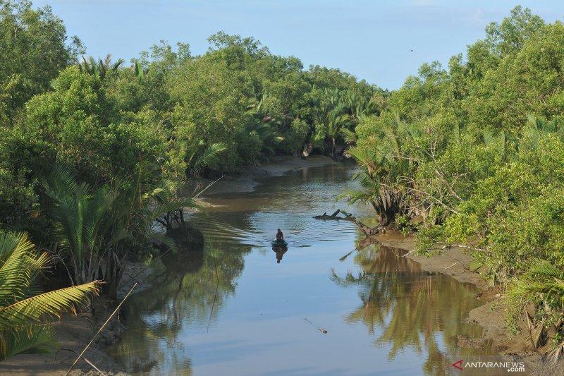 Sekda Jateng minta sosialisasi manfaat dan fungsi mangrove diintensifkan