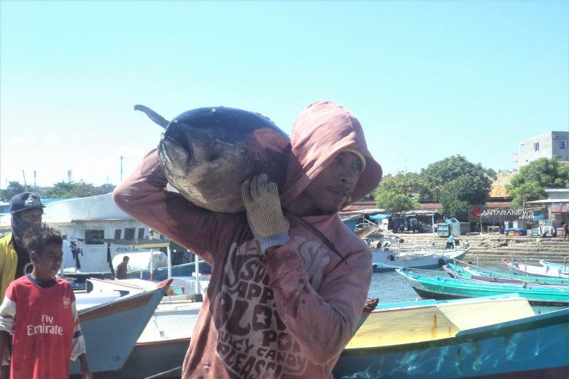 Harga Ikan di Kupang meroket akibat cuaca buruk