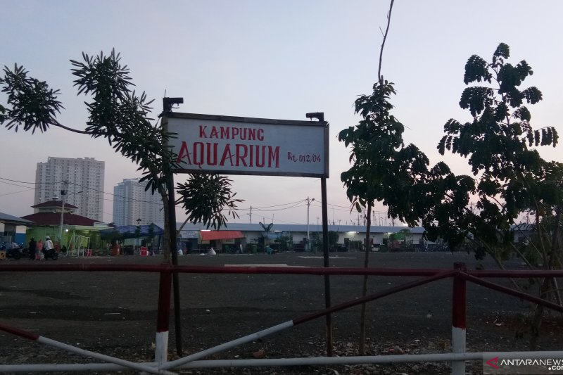 Kampung Akuarium Jakarta Utara diarahkan kawasan wisata budaya sejarah