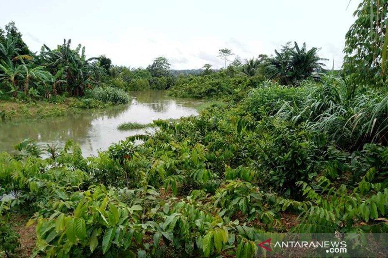 Sumur resapan di Pekanbaru bekurang akibat alih fungsi lahan