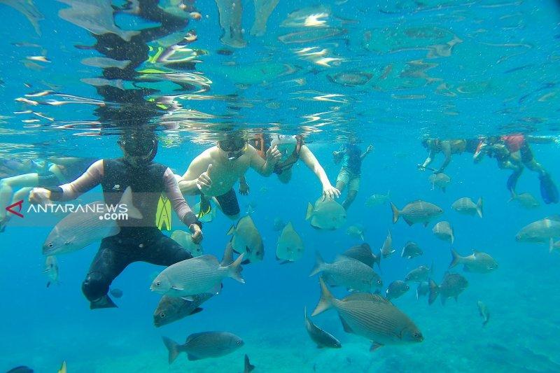 Lima destinasi  surga ikan Raja Ampat