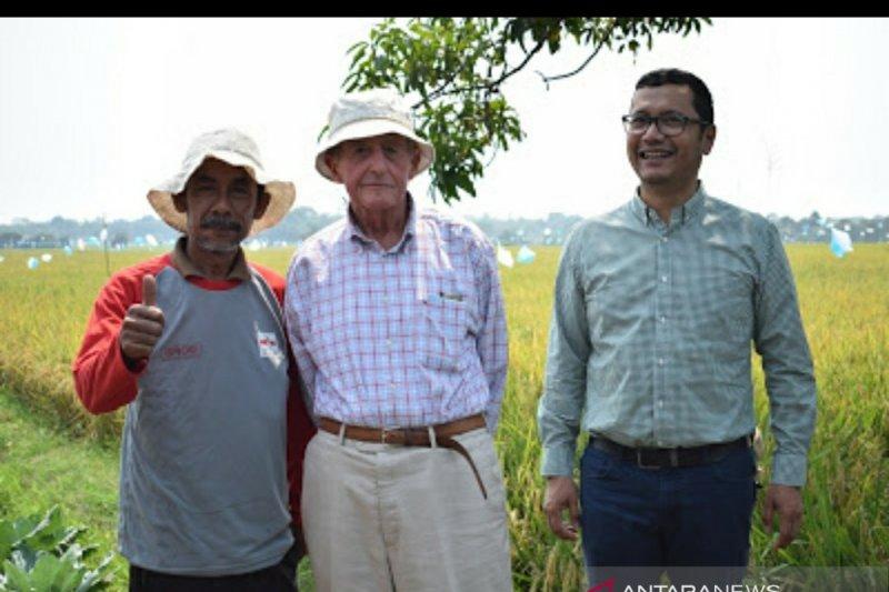 Pendiri East West Seed  raih Nobel pangan